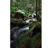 Arm River Photographic Print