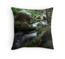 Arm River Throw Pillow