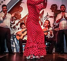 The Joy of Flamenco by TonyCrehan