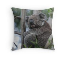 Cape Otway Koala Throw Pillow