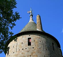 The Keep Tower at Castell Coch by DRWilliams