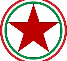 Roundel of the Hungarian People's Air Force, 1949-1951 by abbeyz71