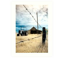 Through The Wire Art Print