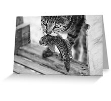 Time to Hunt Greeting Card