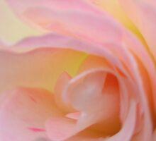 damp folds, radial blur by Lenny La Rue, IPA