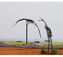 Sculpture Photographic Print