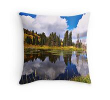 Another View of Paradise Throw Pillow