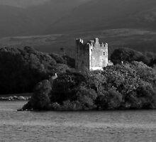 Ross Castle - County Kerry - Ireland by aidan  moran