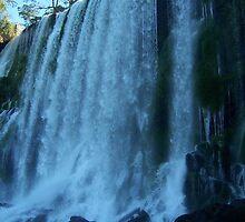 Fall by Iguazù by Rosy Kueng