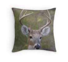 Louisiana Whitetail Buck Throw Pillow
