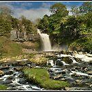 Thornton Force waterfall by Shaun Whiteman