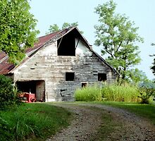 Old Barn by sweetdesign