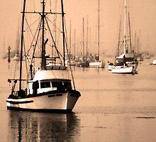 Dawn at Morro Bay by Paul Bailey