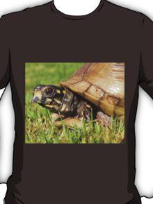 Turtle tshirt T-Shirt
