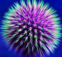 Funky Flower by Reflexions