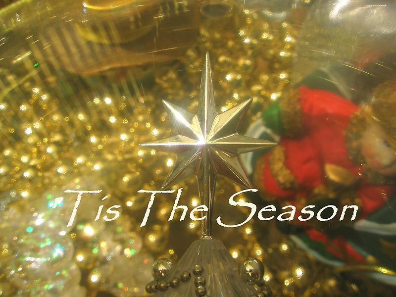 'Tis The Season by Melissa Park