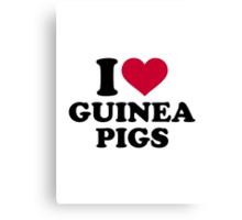I love Guinea pigs Canvas Print