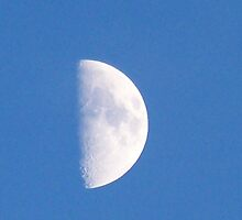 Half Moon in PA by Mindy Miller