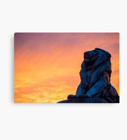 Capital Lion Canvas Print