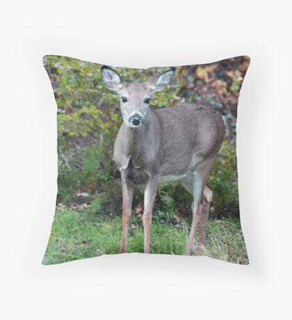 Doe Throw Pillow