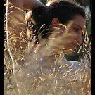 hot summer by chen cohen