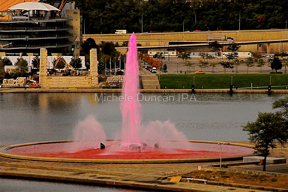 The Pink Fountain by Michele Duncan IPA