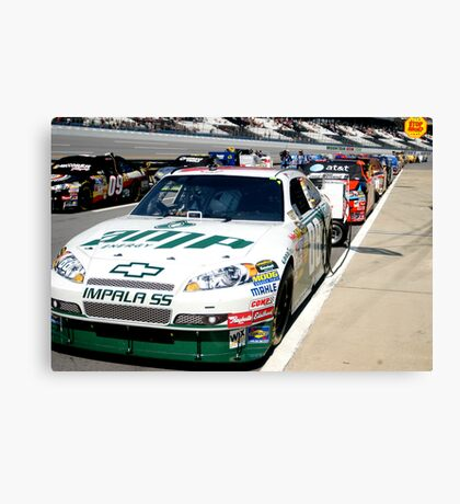 View from Pit Road Canvas Print
