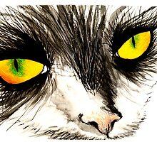Feline by ErikaGlassArt