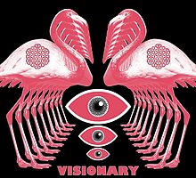 Visionary  by Charles  Perry