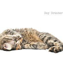Day Dreamer by Alex  Bramwell