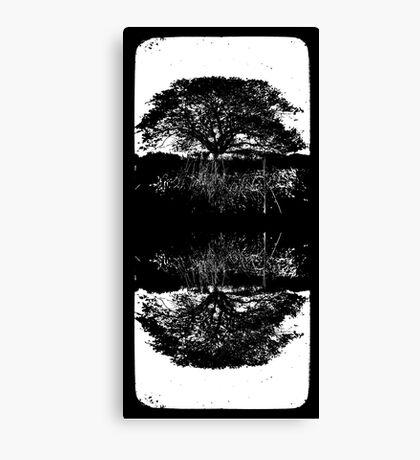 Traces Canvas Print
