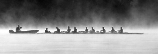 Rowing on a Misty Morning by Adam Spence