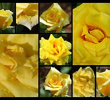 Yellow Rose Collage by Donna Adamski