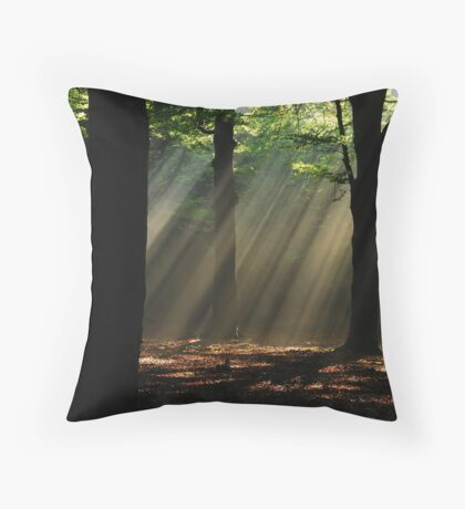 A veil of morning light Throw Pillow