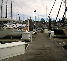 Boat Docks by Laurie Puglia