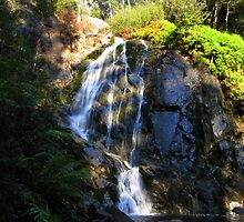 Beautiful Falls by Eddie Johnson