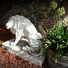 Beautiful Stone Lion in Antique Shop -Trentham Vic. by EdsMum