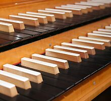 Pipe organ keyboard  by VikaL