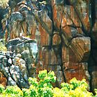 Escarpments in Arnhem Land by Ronald Rockman