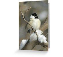 Winter Chicadee Greeting Card