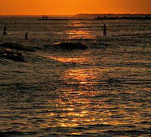 Sunset Surfers by Stephanie  Newbold