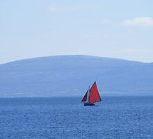 Galway Hooker Coloured by Gary  Collins