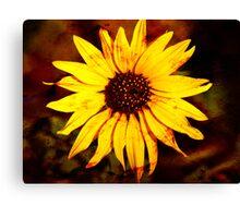 Textured Sunflower Canvas Print