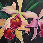 orchids by ideel