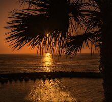 Sunset  by JPopov