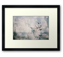 Sea Dreams Framed Print