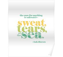 The Cure for Anything is Saltwater Poster