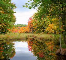 Lake reflection by rakiddd