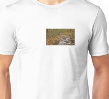 DeSoto Falls – scenic hikes along Frogtown Creek Unisex T-Shirt