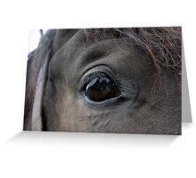 Self Portrait in a Horse's Eye Greeting Card
